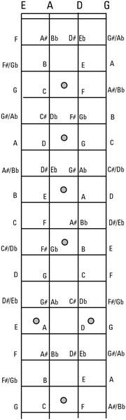 Violin Fingering Chart Bass Guitar
